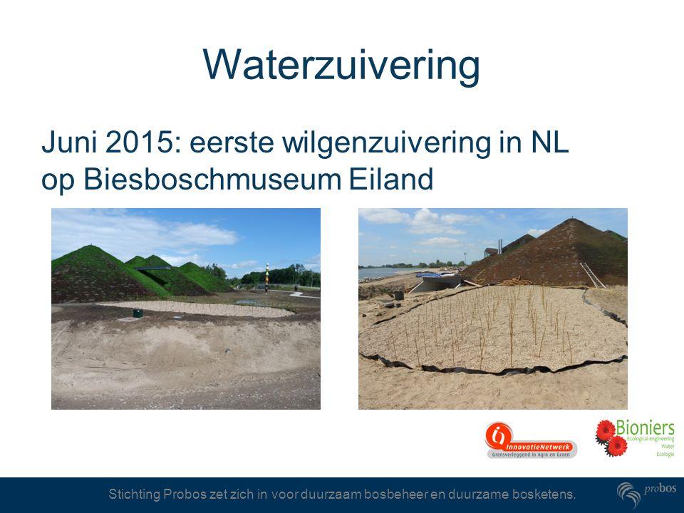 Stichting Probos zet zich in voor duurzaam bosbeheer en duurzame bosketens. Waterzuivering Juni 2015: eerste wilgenzuivering in NL op Biesboschmuseum