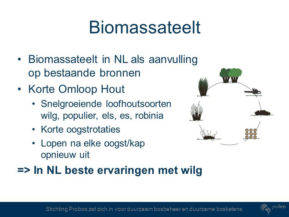 Stichting Probos zet zich in voor duurzaam bosbeheer en duurzame bosketens. Biomassateelt Biomassateelt in NL als aanvulling op bestaande bronnen Kort