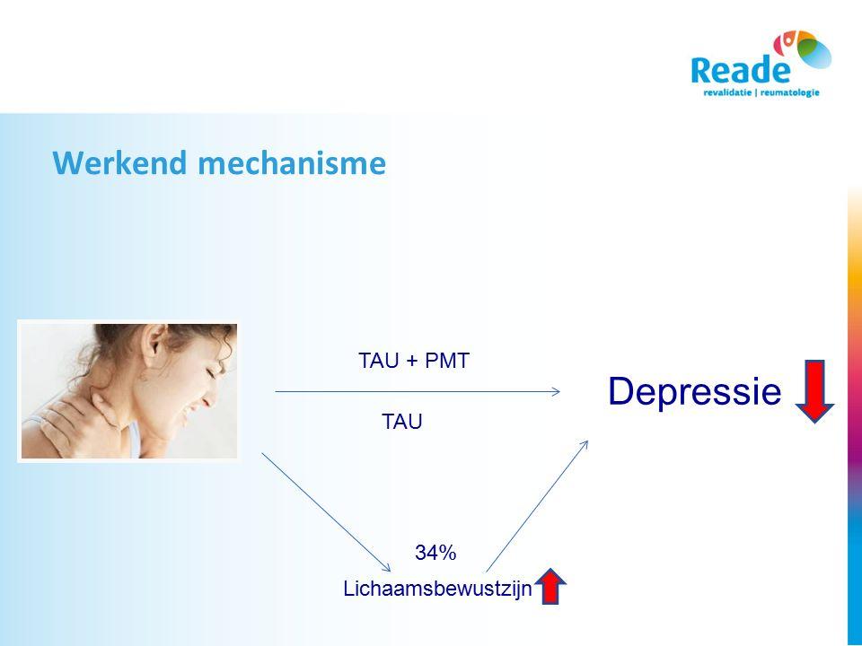 Werkend mechanisme TAU + PMT TAU Depressie Lichaamsbewustzijn 34%