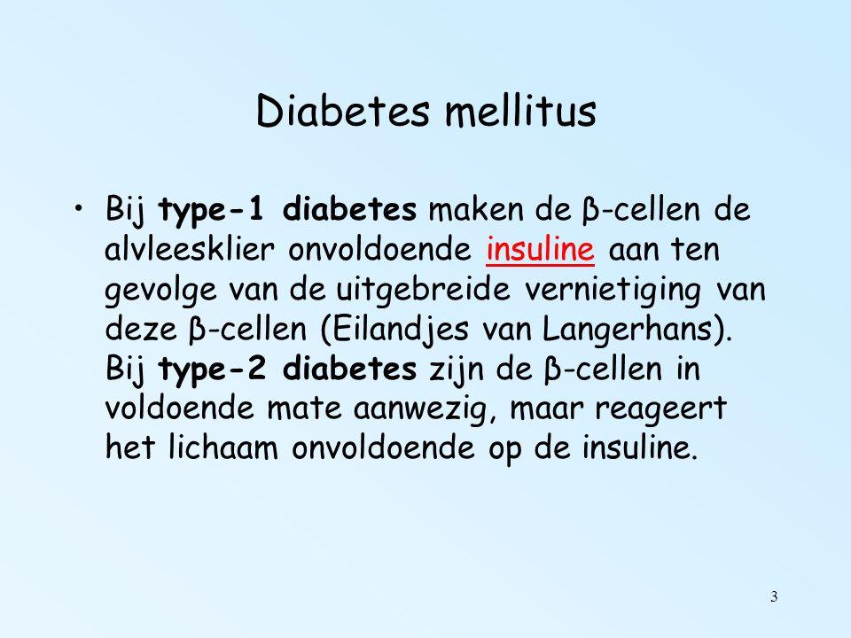 3 Diabetes mellitus Bij type-1 diabetes maken de β-cellen de alvleesklier onvoldoende insuline aan ten gevolge van de uitgebreide vernietiging van deze β-cellen (Eilandjes van Langerhans).