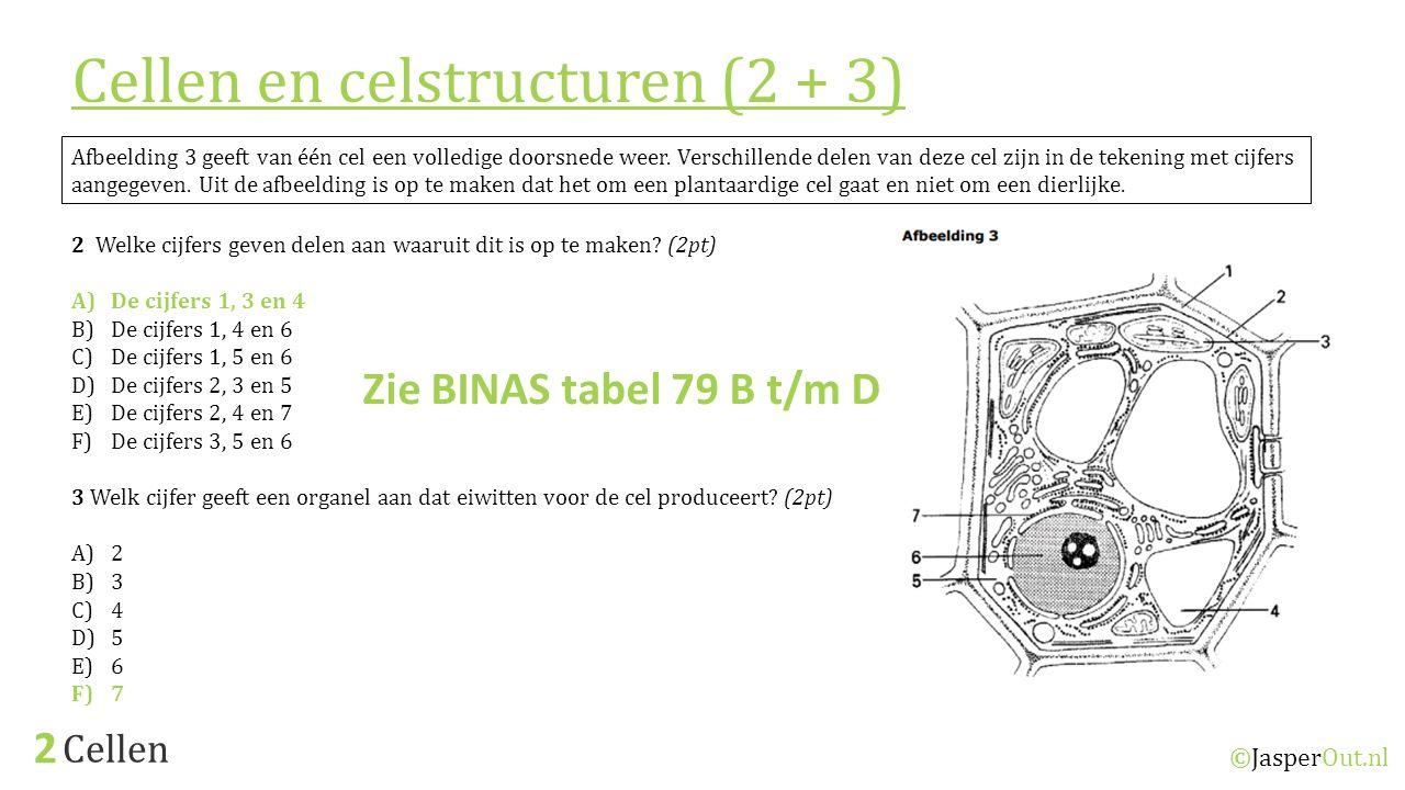 Cellen 2 ©JasperOut.nl Afbeelding 3 geeft van één cel een volledige doorsnede weer. Verschillende delen van deze cel zijn in de tekening met cijfers a