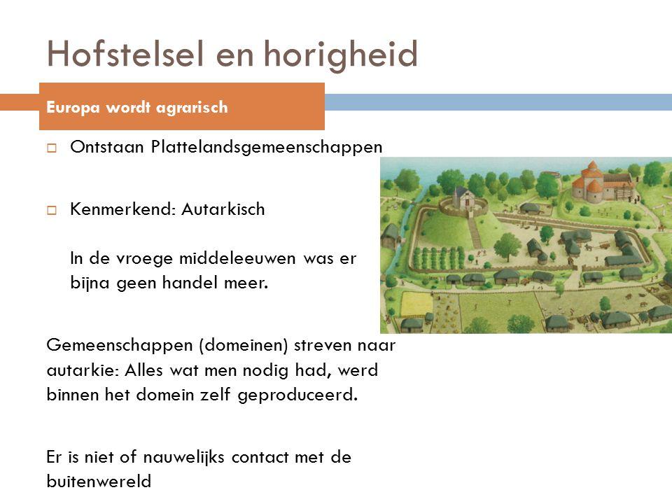Hofstelsel en horigheid  Ontstaan Plattelandsgemeenschappen  Kenmerkend: Autarkisch In de vroege middeleeuwen was er bijna geen handel meer.