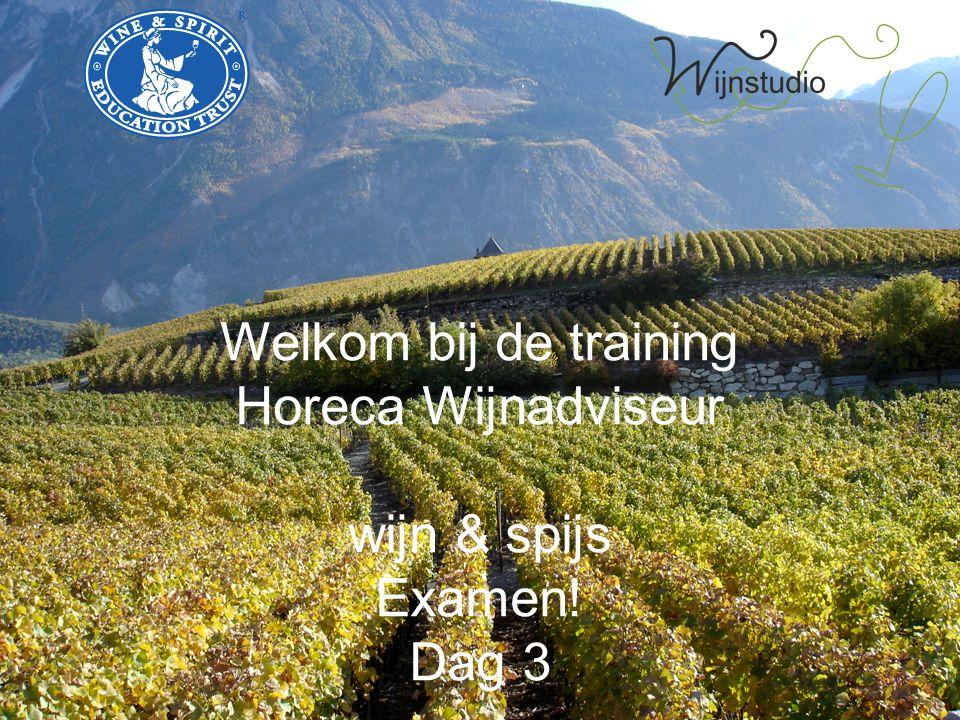 Welkom bij de training Horeca Wijnadviseur wijn & spijs Examen! Dag 3