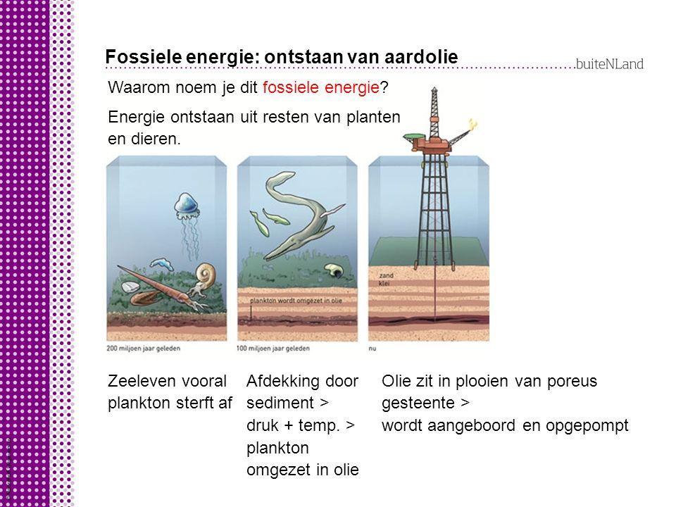 Fossiele energie: ontstaan van aardolie Waarom noem je dit fossiele energie.