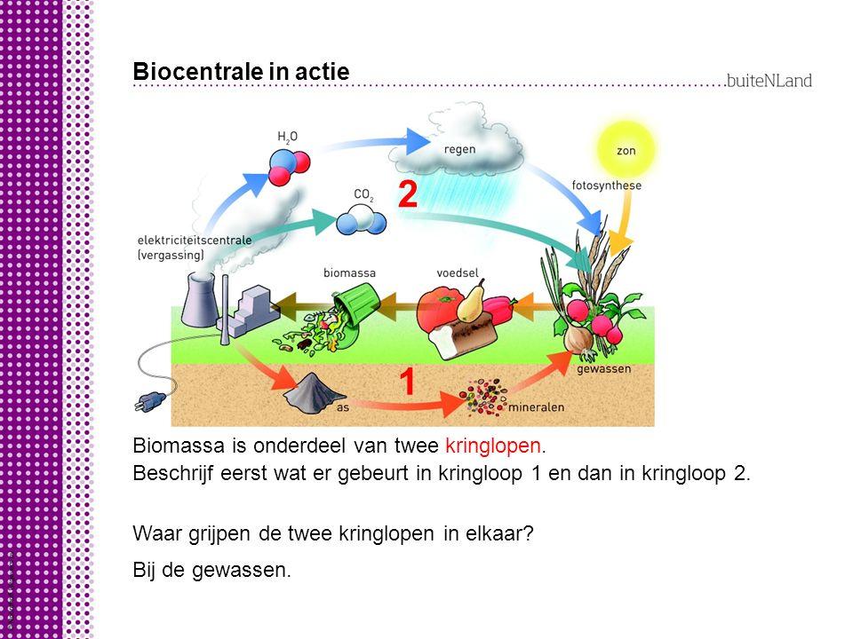 Biocentrale in actie Biomassa is onderdeel van twee kringlopen.