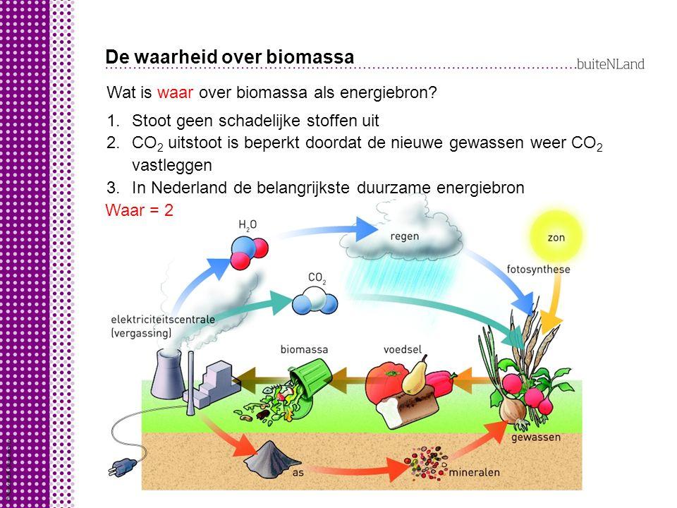 De waarheid over biomassa Wat is waar over biomassa als energiebron.