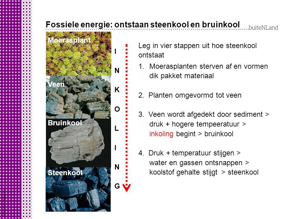 Fossiele energie: ontstaan steenkool en bruinkool Moerasplant Steenkool Bruinkool Veen INKOLINGINKOLING Leg in vier stappen uit hoe steenkool ontstaat 1.Moerasplanten sterven af en vormen dik pakket materiaal 2.