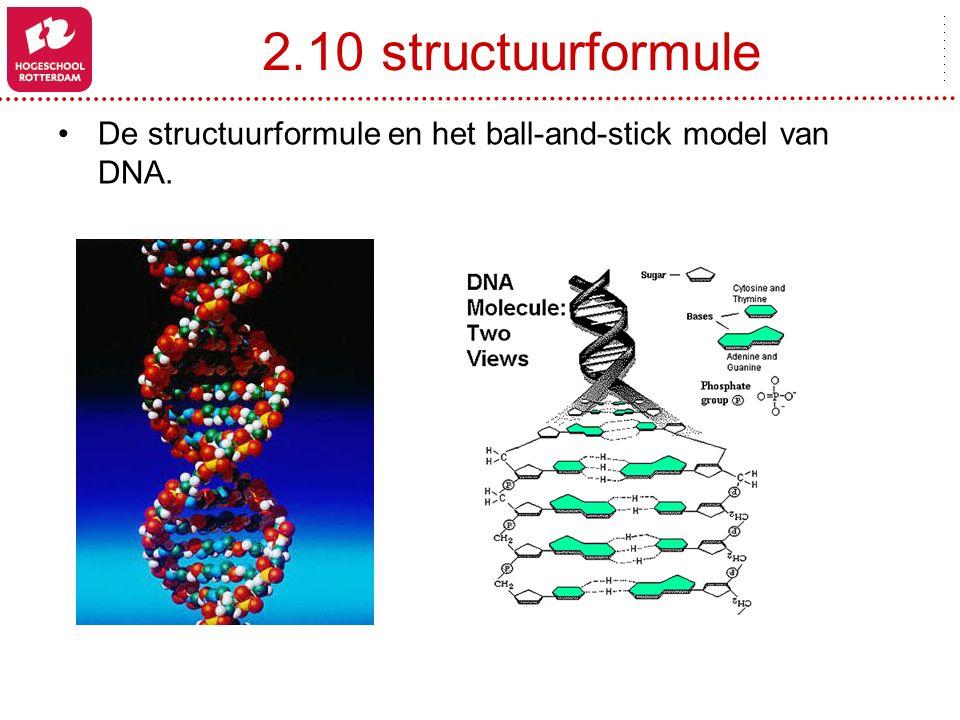 2.10 structuurformule De structuurformule en het ball-and-stick model van DNA.