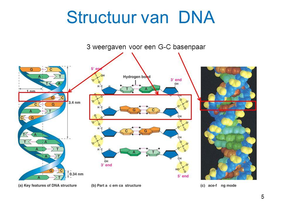6 Fig. 17-3b-1 (b) Eukaryotic cell TRANSCRIPTION Nuclear envelope DNA Pre-mRNA