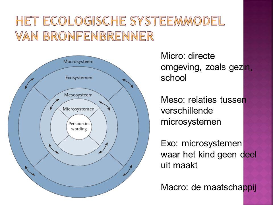 Micro: directe omgeving, zoals gezin, school Meso: relaties tussen verschillende microsystemen Exo: microsystemen waar het kind geen deel uit maakt Macro: de maatschappij