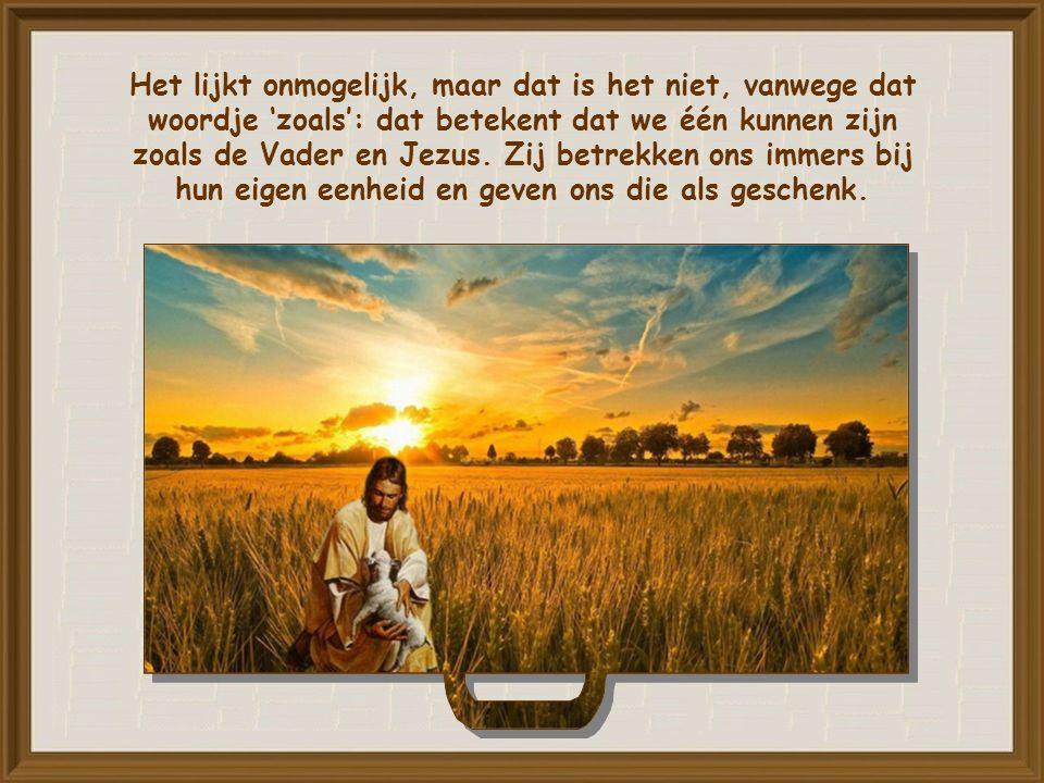 Het model van onze eenheid is niets minder dan de eenheid die bestaat tussen de Vader en Jezus.