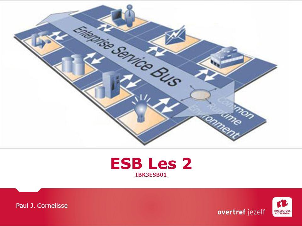 ESB Les 2 IBK3ESB01 Paul J. Cornelisse