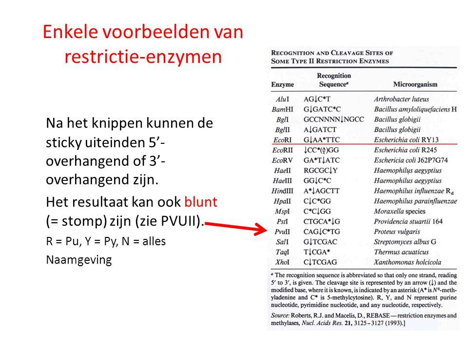 Enkele voorbeelden van restrictie-enzymen Na het knippen kunnen de sticky uiteinden 5'- overhangend of 3'- overhangend zijn. Het resultaat kan ook blu