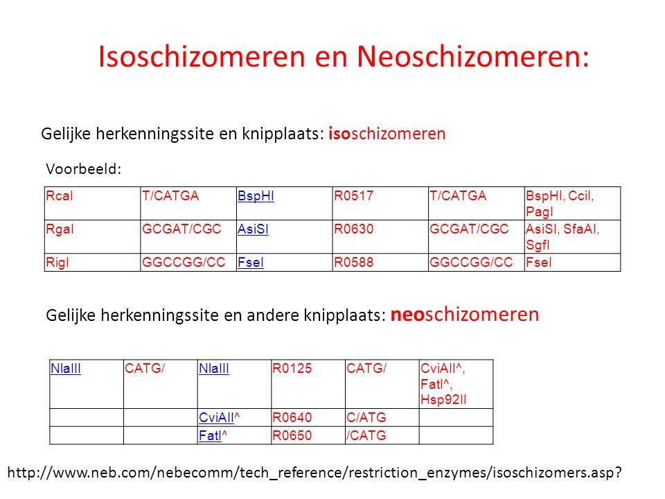 Isoschizomeren en Neoschizomeren: Gelijke herkenningssite en knipplaats: isoschizomeren Gelijke herkenningssite en andere knipplaats: neoschizomeren V