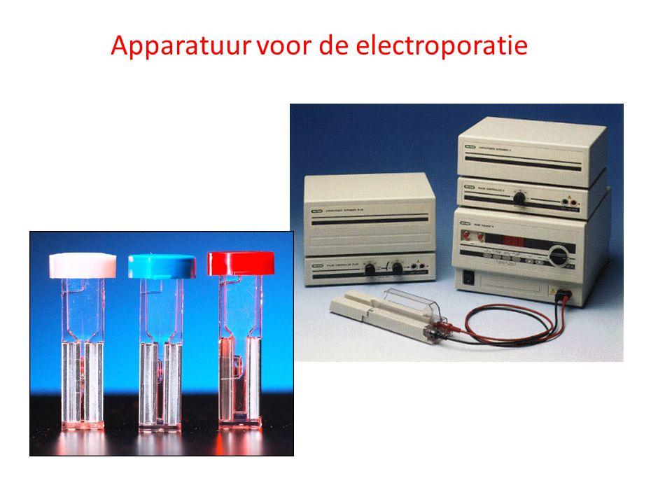 Apparatuur voor de electroporatie