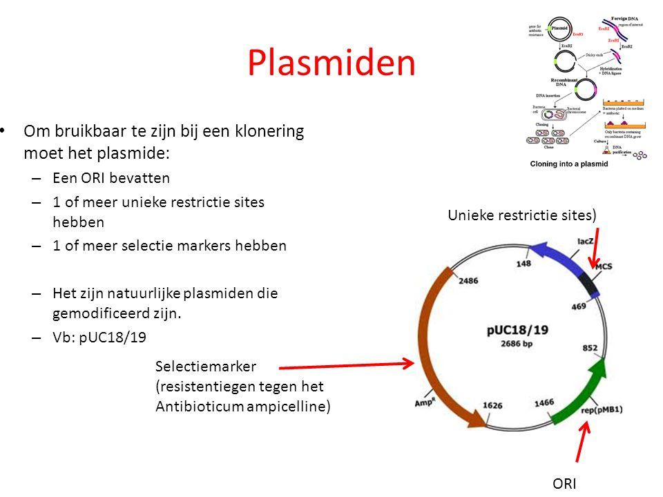 Plasmiden Om bruikbaar te zijn bij een klonering moet het plasmide: – Een ORI bevatten – 1 of meer unieke restrictie sites hebben – 1 of meer selectie