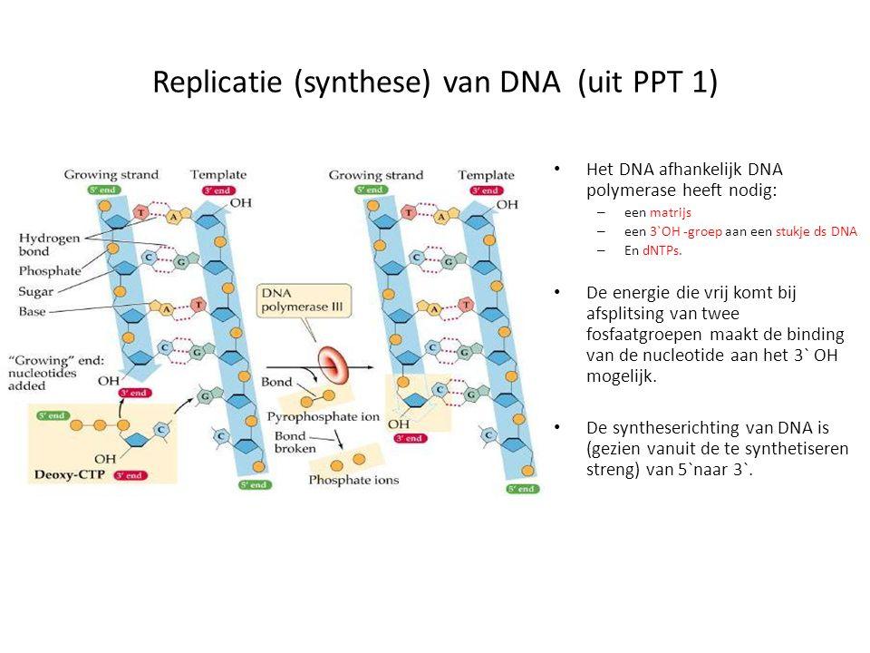 Restrictie-enzymen Er zijn 3 types RE's: I: herkent een sequentie en knipt duizenden nucleotiden verder II: herkent een palindroom sequentie en knipt daarin of daarnaast III: herkent een sequentie en knipt 25 – 30 nt verder.