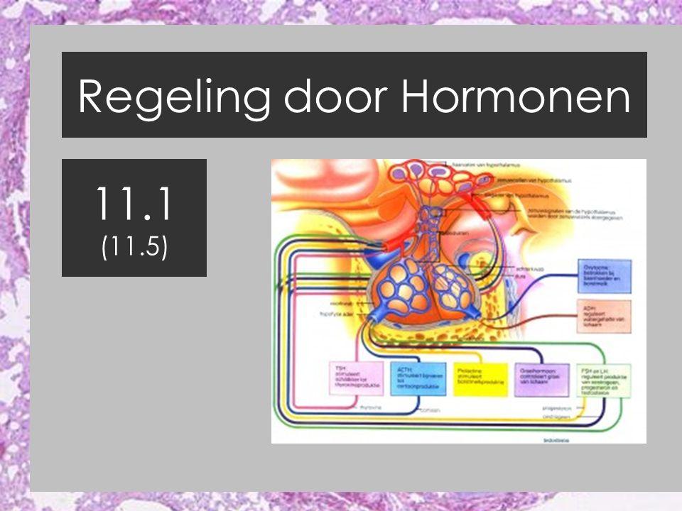 11.5 Hormonen doen hun werk Theorie 11.5 Video (81 Hormonen) Oefening Insuline / Glucagon Opgaven 11.4 / 11.5 maken 30 september (Proefwerk HFST 11) (?) Bij vragen op het proefwerk over Hormonen ALTIJD Binas 89A Raadplegen
