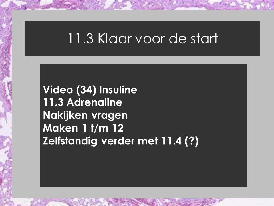 11.3 Klaar voor de start Video (34) Insuline 11.3 Adrenaline Nakijken vragen Maken 1 t/m 12 Zelfstandig verder met 11.4 (?)