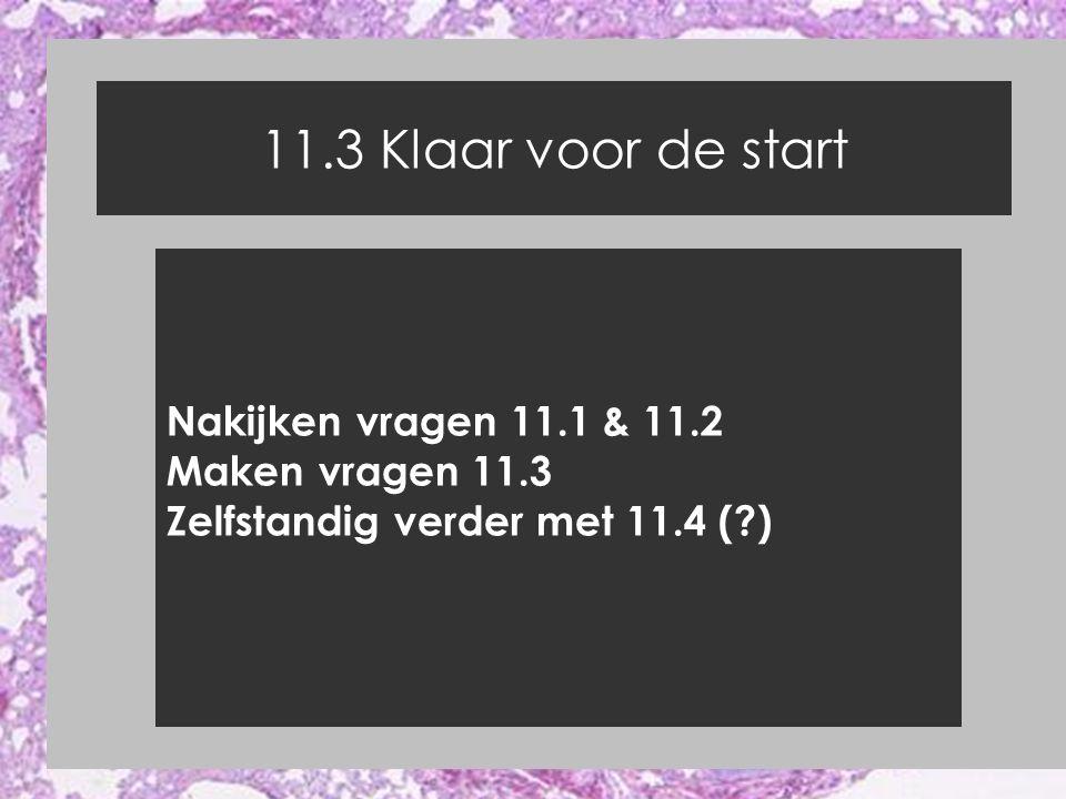 11.3 Klaar voor de start Nakijken vragen 11.1 & 11.2 Maken vragen 11.3 Zelfstandig verder met 11.4 (?)