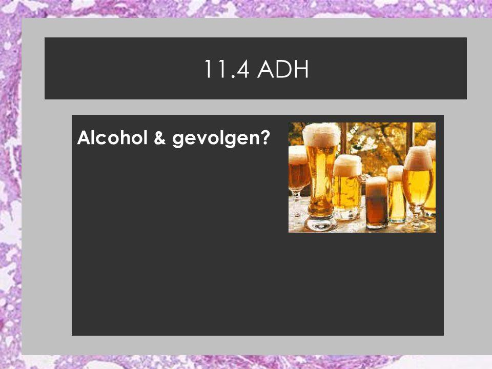 11.4 ADH Alcohol & gevolgen?