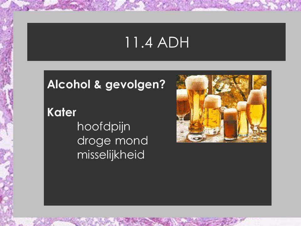 11.4 ADH Alcohol & gevolgen? Kater hoofdpijn droge mond misselijkheid