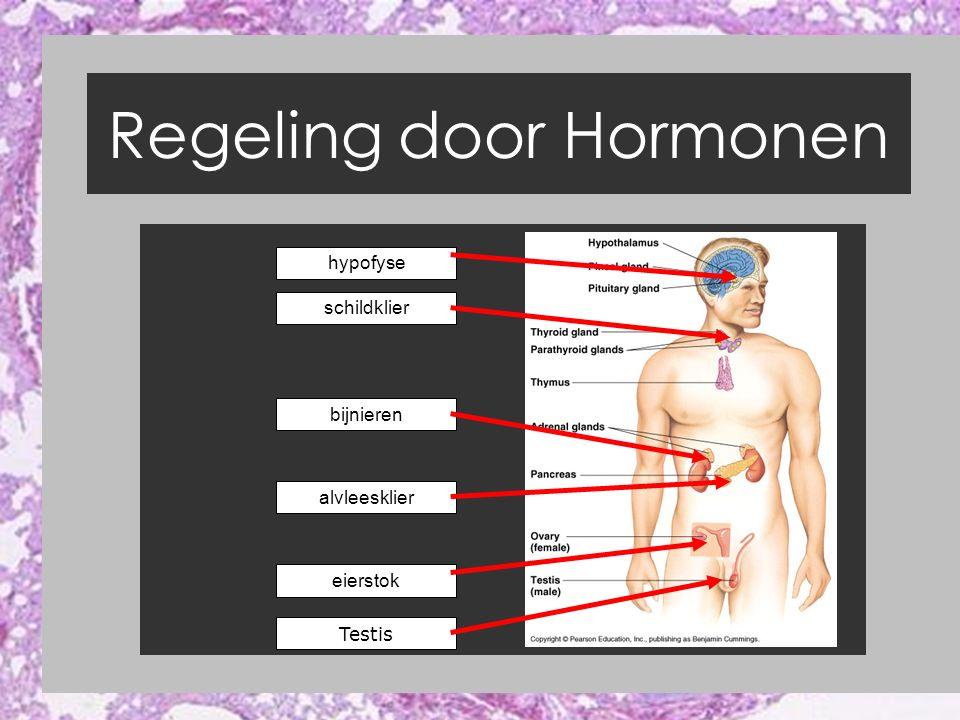 Regeling door Hormonen Bron 6 Blz 273 Hypothalamus Hypofyse BINAS 89 ABC neurohormonen