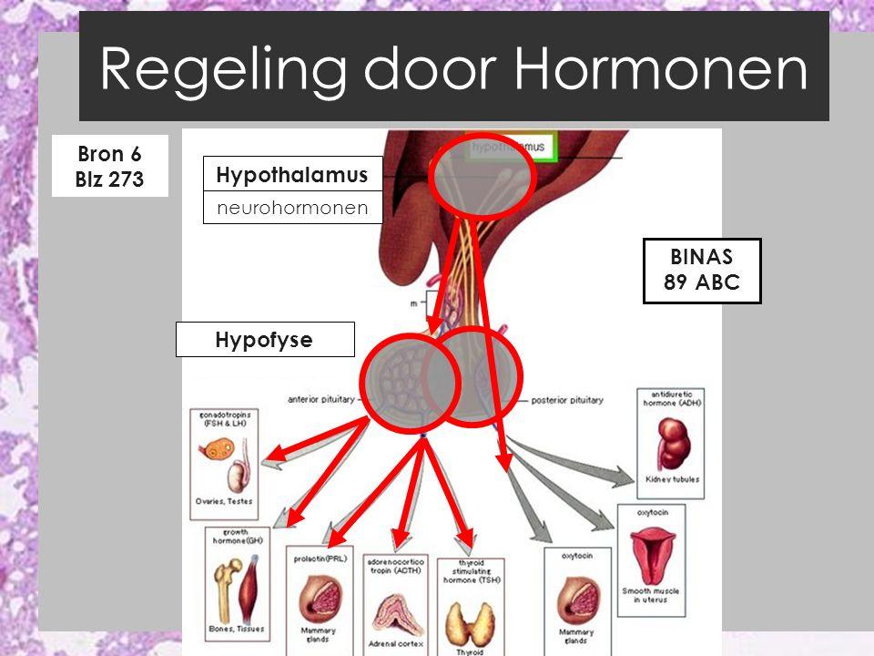 Regeling door Hormonen EEN VOORBEELD BIOPLEK