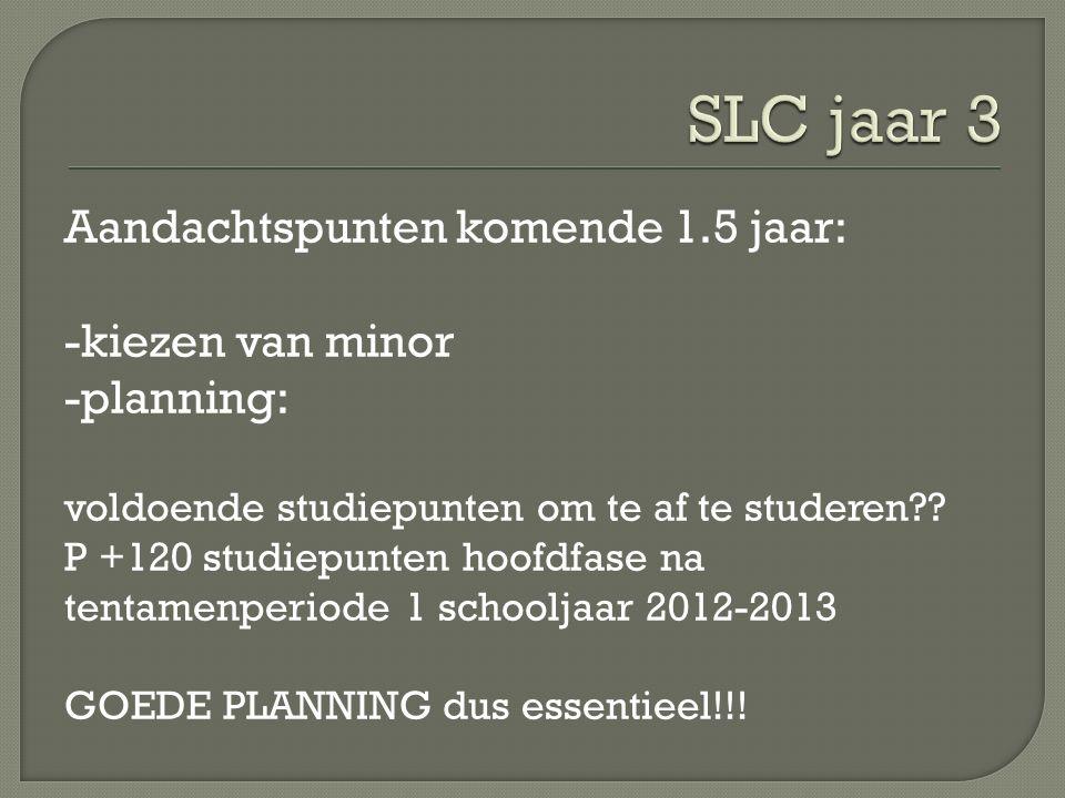 Aandachtspunten komende 1.5 jaar: -kiezen van minor -planning: voldoende studiepunten om te af te studeren .