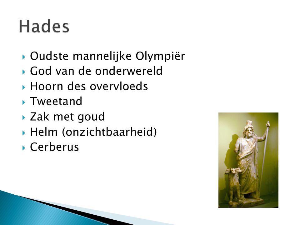  Oudste mannelijke Olympiër  God van de onderwereld  Hoorn des overvloeds  Tweetand  Zak met goud  Helm (onzichtbaarheid)  Cerberus