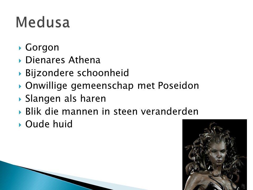  Gorgon  Dienares Athena  Bijzondere schoonheid  Onwillige gemeenschap met Poseidon  Slangen als haren  Blik die mannen in steen veranderden  O