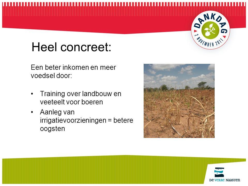 Heel concreet: Een beter inkomen en meer voedsel door: Training over landbouw en veeteelt voor boeren Aanleg van irrigatievoorzieningen = betere oogsten
