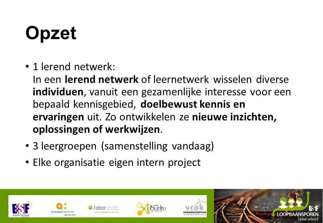 Opzet 1 lerend netwerk: In een lerend netwerk of leernetwerk wisselen diverse individuen, vanuit een gezamenlijke interesse voor een bepaald kennisgebied, doelbewust kennis en ervaringen uit.