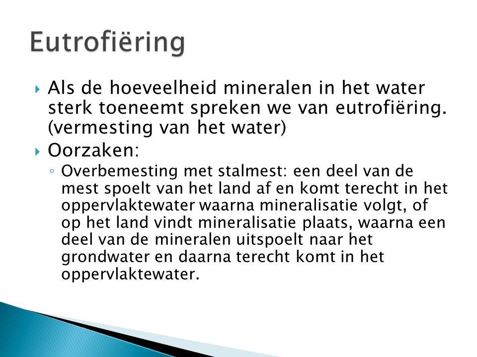  Als de hoeveelheid mineralen in het water sterk toeneemt spreken we van eutrofiëring. (vermesting van het water)  Oorzaken: ◦ Overbemesting met sta