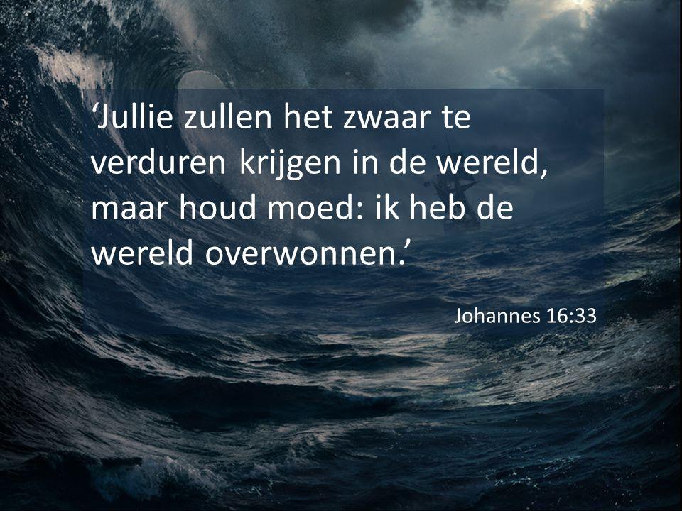 'Jullie zullen het zwaar te verduren krijgen in de wereld, maar houd moed: ik heb de wereld overwonnen.' Johannes 16:33