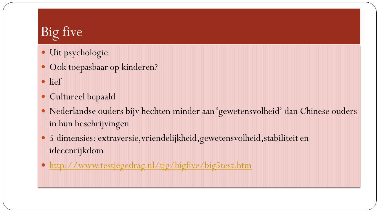 Big five Uit psychologie Ook toepasbaar op kinderen.