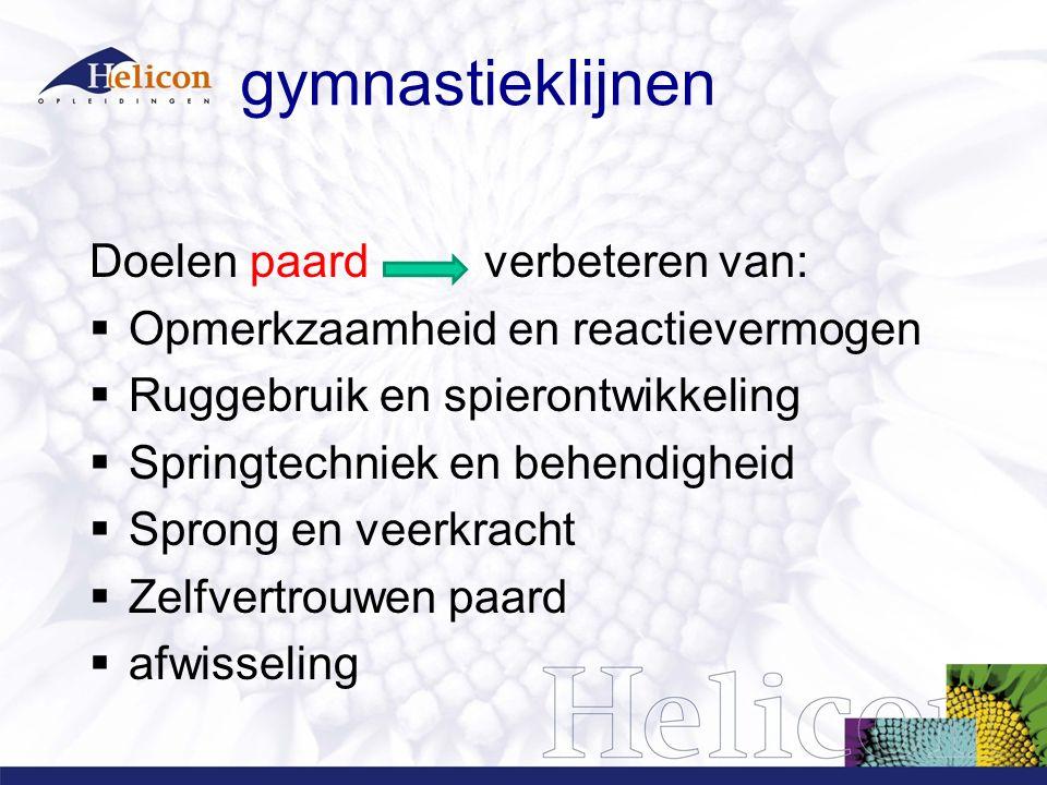 gymnastieklijnen Doelen paard verbeteren van:  Opmerkzaamheid en reactievermogen  Ruggebruik en spierontwikkeling  Springtechniek en behendigheid 