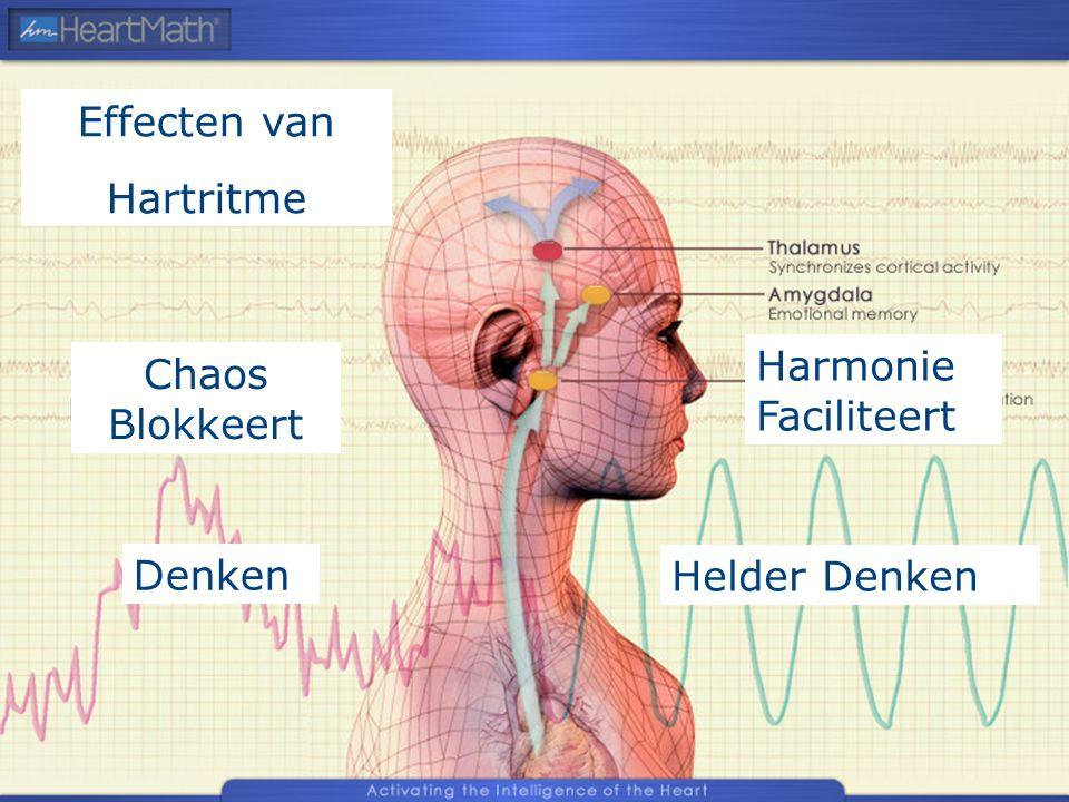 Chaos Blokkeert Helder Denken Harmonie Faciliteert Denken Effecten van Hartritme