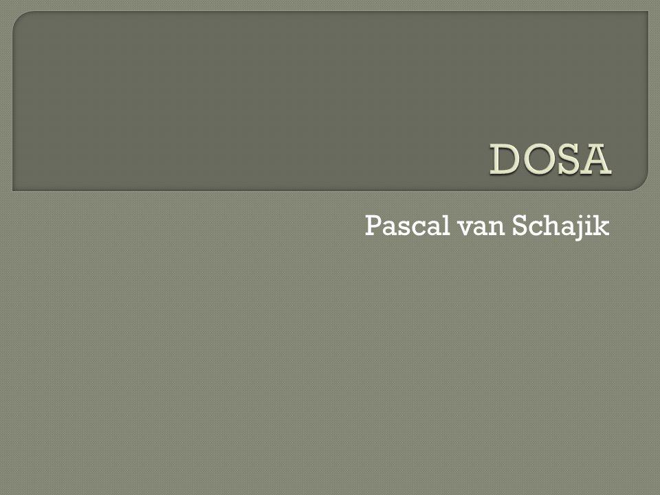Pascal van Schajik