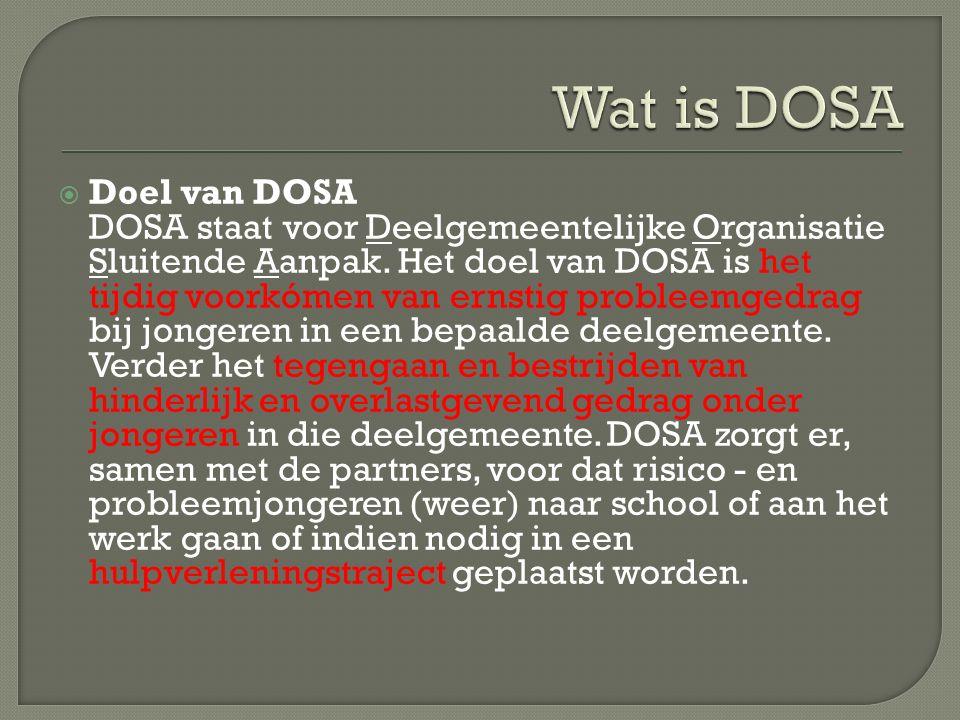  Doelgroep DOSA richt zich op alle jongeren tot 23 jaar, die binnen een bepaalde deelgemeente wonen en problemen hebben.