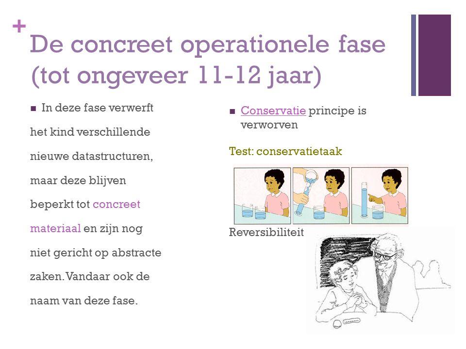 + De concreet operationele fase (tot ongeveer 11-12 jaar) In deze fase verwerft het kind verschillende nieuwe datastructuren, maar deze blijven beperk