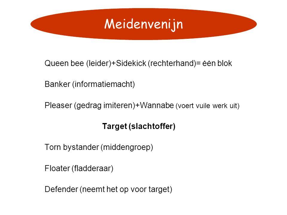 Queen bee (leider)+Sidekick (rechterhand)= ėėn blok Banker (informatiemacht) Pleaser (gedrag imiteren)+Wannabe (voert vuile werk uit) Target (slachtof