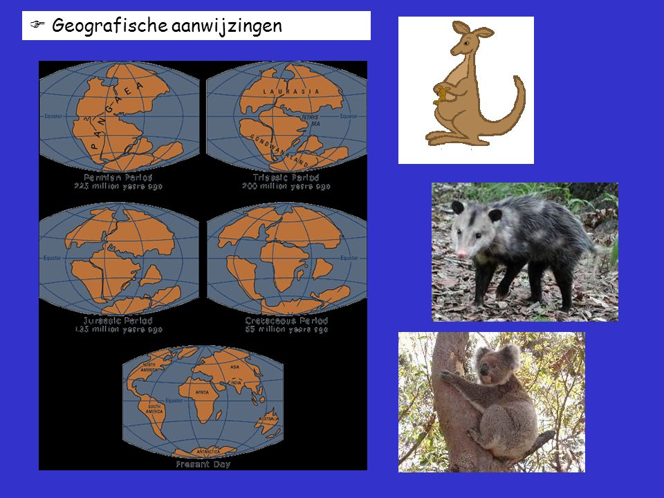 Geografische aanwijzingen