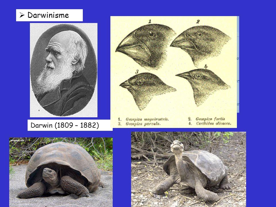  Darwinisme Darwin (1809 – 1882)