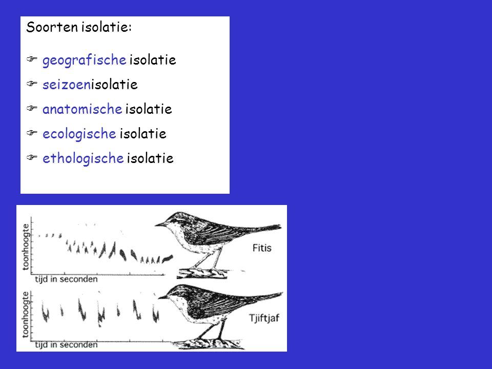 Soorten isolatie:  geografische isolatie  seizoenisolatie  anatomische isolatie  ecologische isolatie  ethologische isolatie