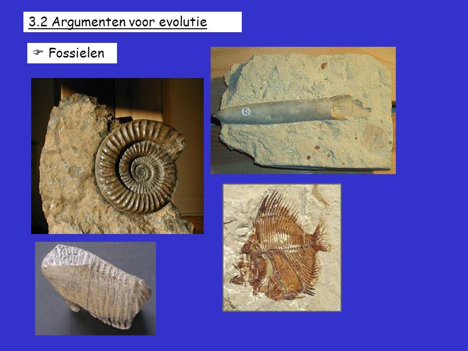 3.2 Argumenten voor evolutie  Fossielen