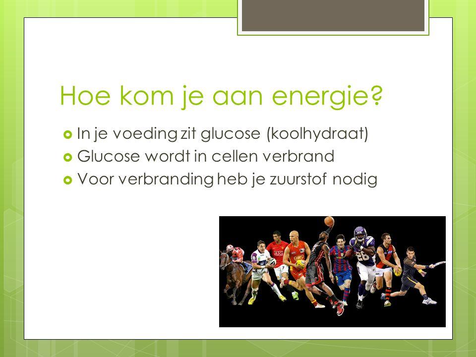 Hoe kom je aan energie.