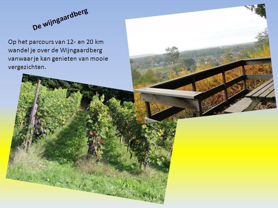 De wijngaardberg Op het parcours van 12- en 20 km wandel je over de Wijngaardberg vanwaar je kan genieten van mooie vergezichten.