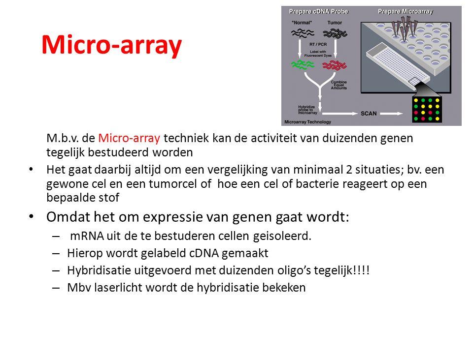 Micro-array M.b.v.