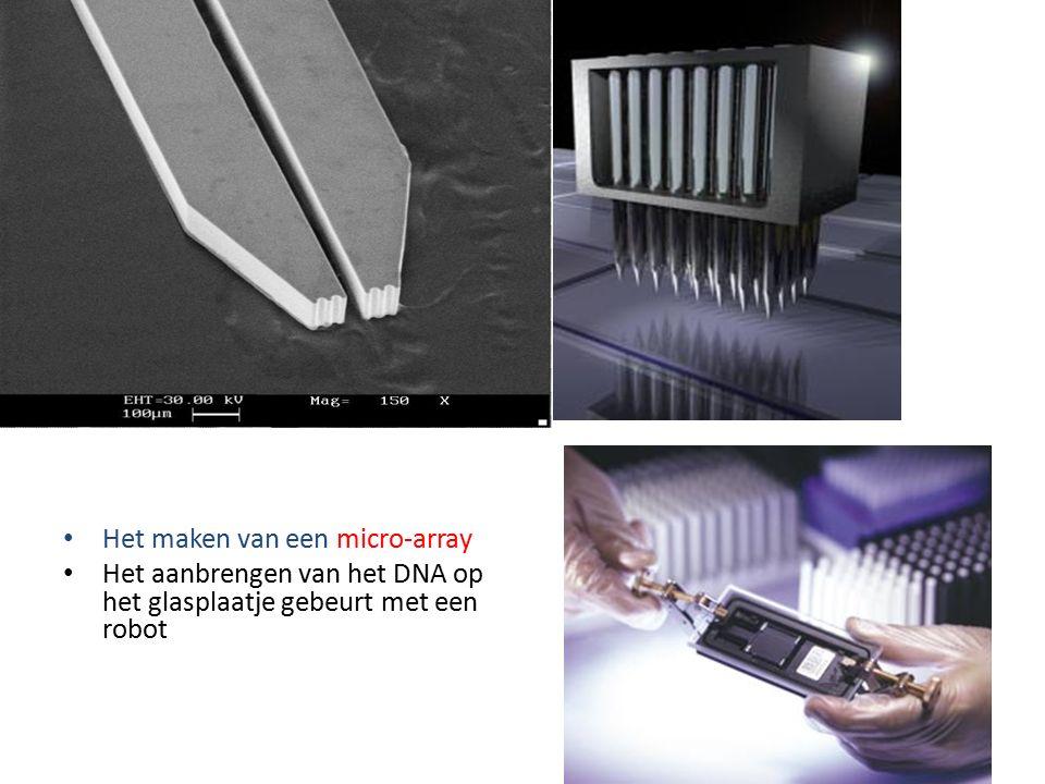 Het maken van een micro-array Het aanbrengen van het DNA op het glasplaatje gebeurt met een robot